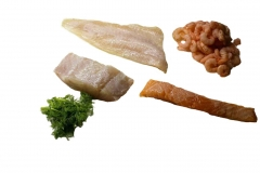 Fisch (freigest.)