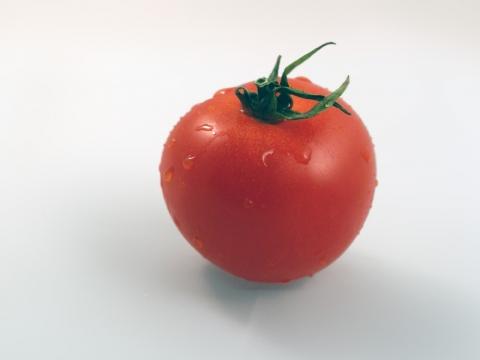 tomate-wet.jpg