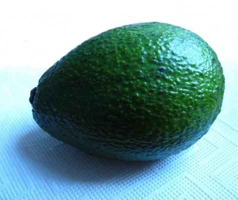 avocado_02_sister.jpg