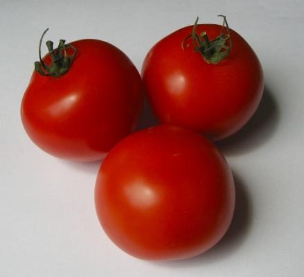 tomate_01_sister.jpg