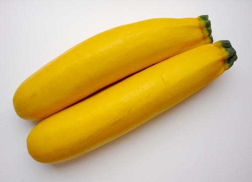 zucchini-gelb_01_bstumpf.jpg