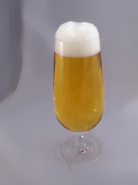 bier-wet.jpg