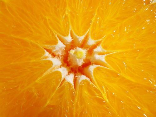orange_01_udoweingarth.jpg