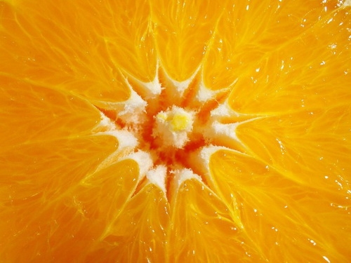 Orange_01_UdoWeingarth.500.jpg