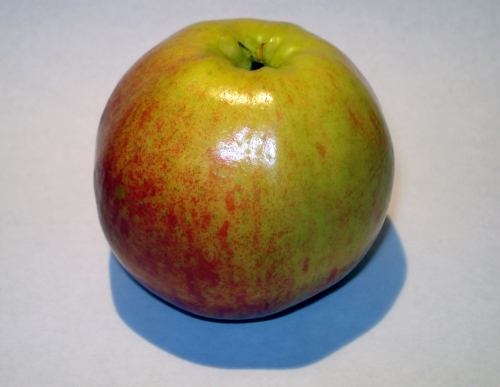 apfel_jonacored_1.jpg