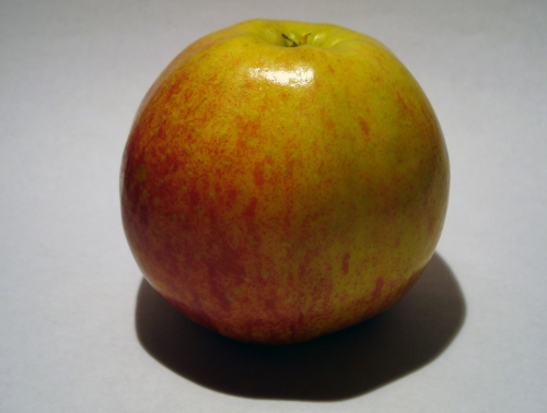 apfel_jonacored_2.jpg