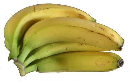 bananen-01-hokamp.jpg