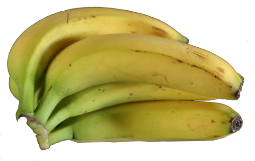 bananen.png