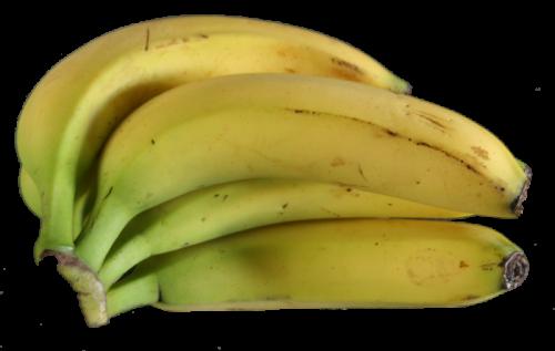 bananen.png