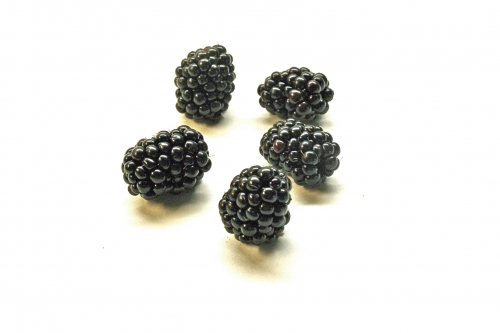 brombeeren_01_dauni.jpg