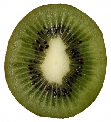 kiwi_halb_bstumpf.jpg