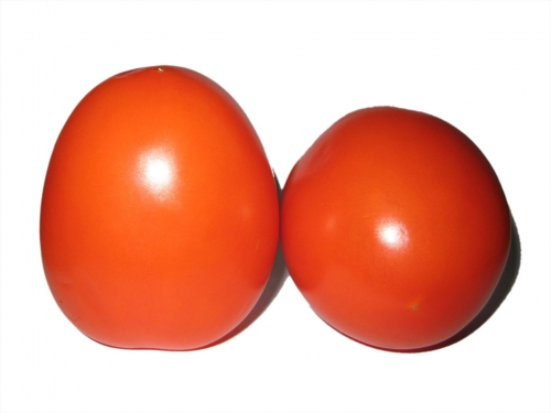tomaten_001_ulikutting.jpg