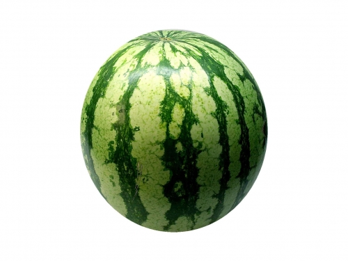 wassermelone_01_dauni.jpg