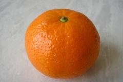 Obst (mit HG)