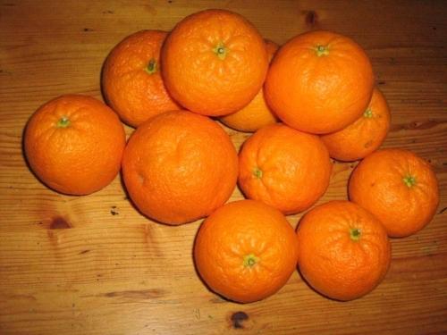 mandarinen_02_-utehohmann.jpg