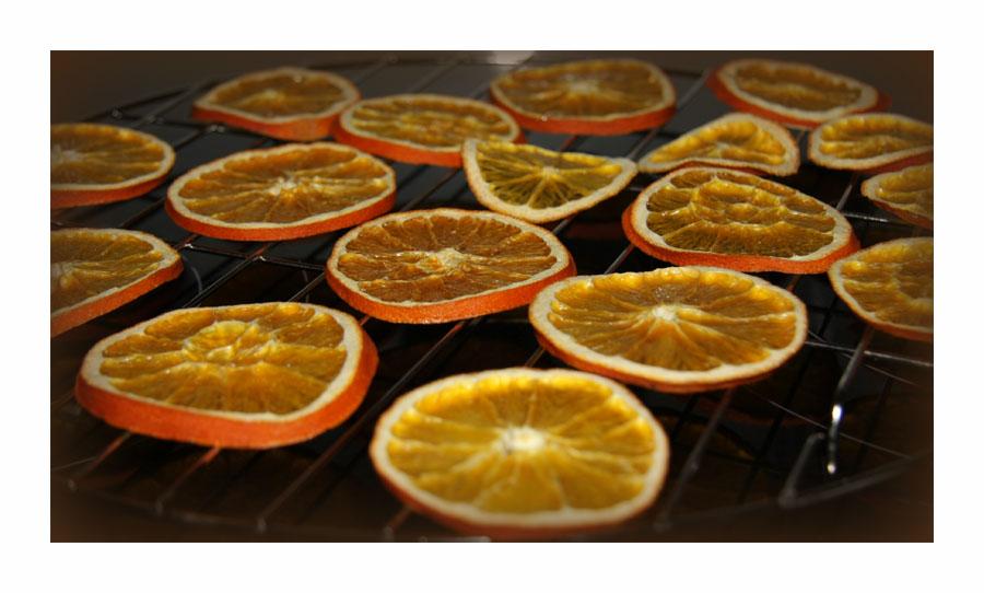 Orangenscheiben2_hg_lebenslang